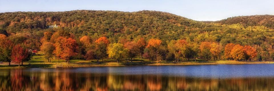 forêt d'érables multicolore du Québec en automne pour la seaine des couleurs de l'été indien