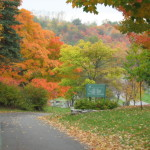 Couleurs d'automne au Québec
