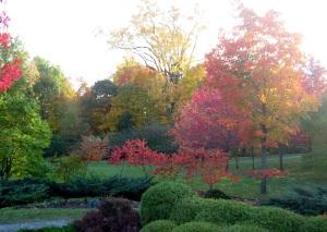 Couleurs d'automne Parc Québec