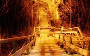 escaliers vertigineux